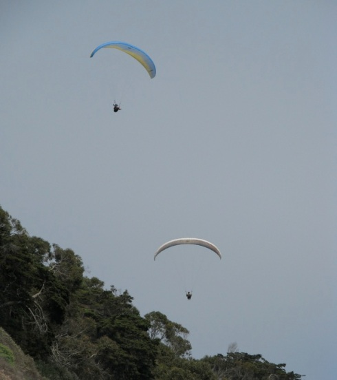 Hang glides off cliff above burro beach.