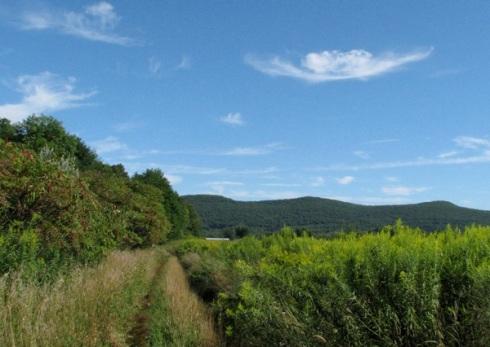 Acadia path 8-24-13